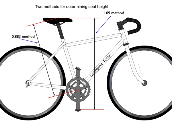 The Correct Saddle Height