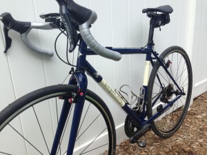 Georgena Terry Bicycles Gale Force